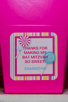 Samantha G's Bat Mitzvah Celebration Night Details @ Bethesda Hyatt